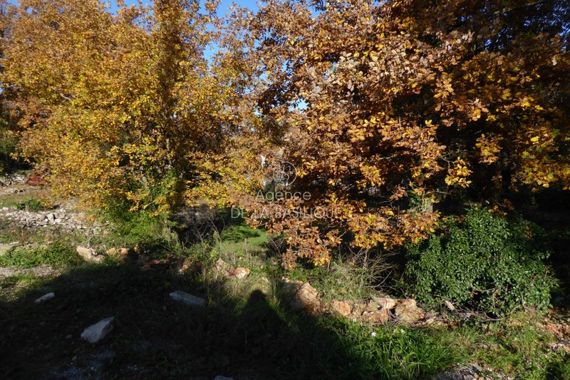 Photo Land Saint-Maximin-la-Sainte-Baume Hors agglomération,   to buy land   2000 m²
