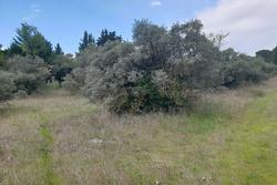 Vente terrain à bâtir Saint-Maximin-la-Sainte-Baume