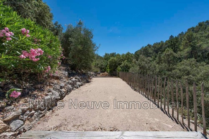 Photo n°5 - Vente maison Vidauban 83550 - 635 000 €