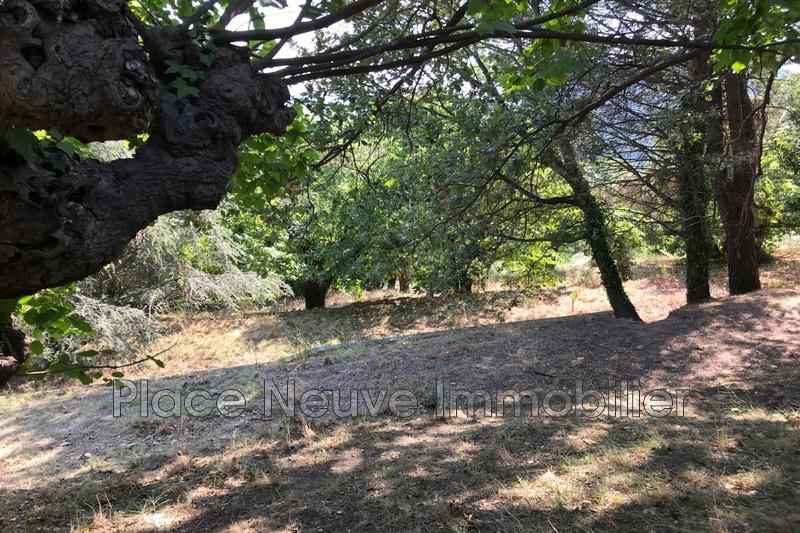 Photo n°1 - Vente terrain à bâtir La Garde-Freinet 83680 - 295 000 €