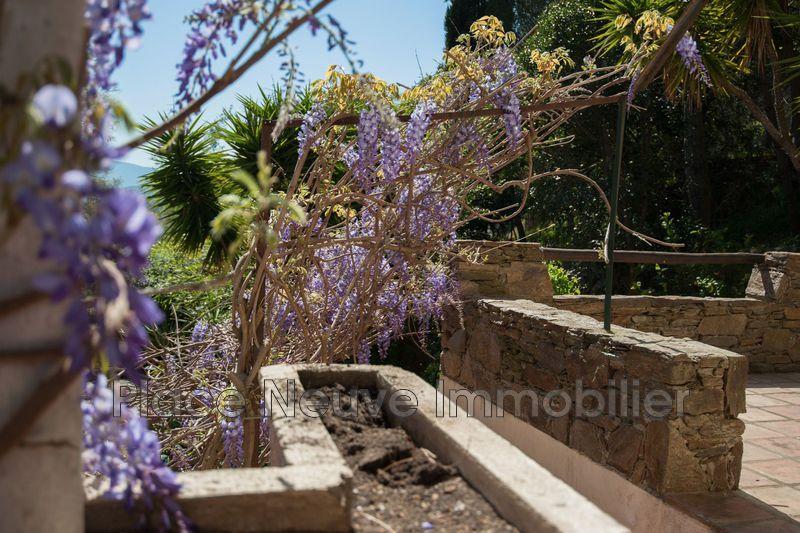 Photo n°4 - Vente appartement Grimaud 83310 - 560 000 €