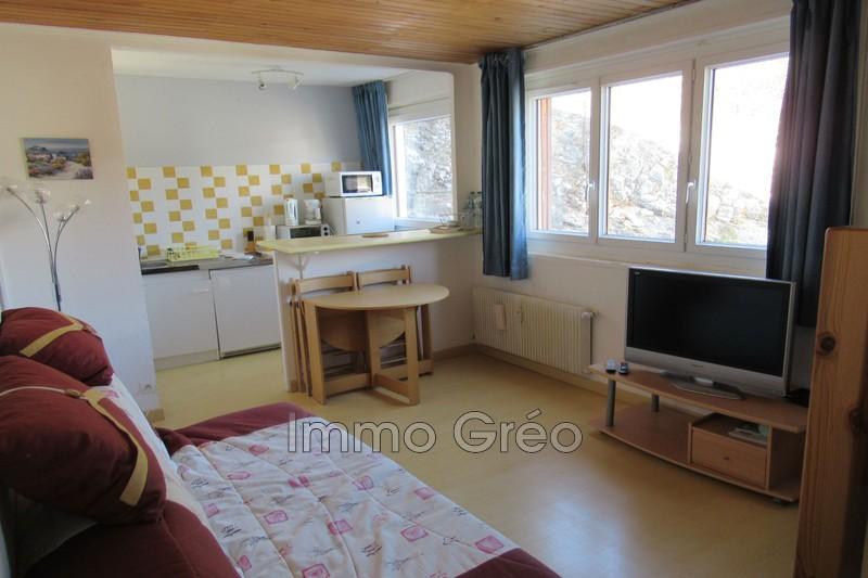 Photo Apartment Gréolières les Neiges Gréolières les neiges,   to buy apartment  1 room   26m²
