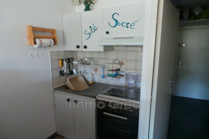Photo n°2 - Vente Appartement studio cabine Gréolières les Neiges 06620 - 49 500 €