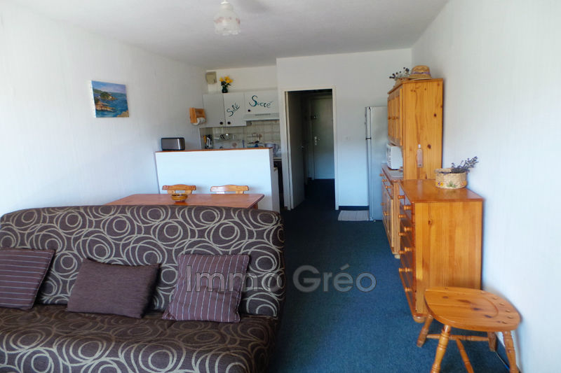 Photo n°3 - Vente Appartement studio cabine Gréolières les Neiges 06620 - 49 500 €