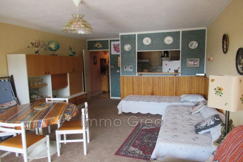Photo Appartement Gréolières les Neiges Centre station,   achat appartement  1 pièce   37m²