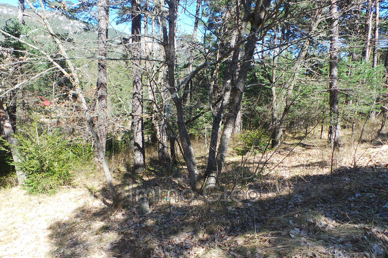 Photo Terrain constructible THORENC   achat terrain constructible   1970 m²
