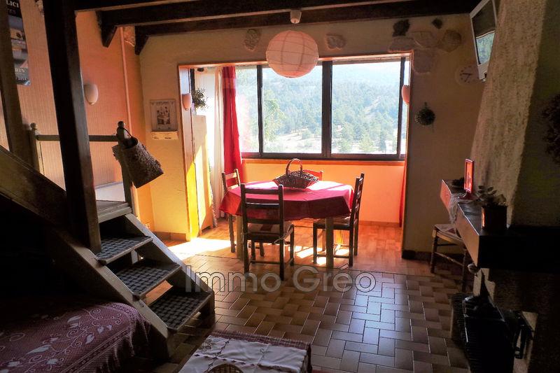 Photo n°3 - Vente Appartement duplex Gréolières les Neiges 06620 - 79 000 €