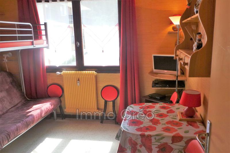 Appartement Gréolières les Neiges Gréolières les neiges,   achat appartement  1 pièce   15m²