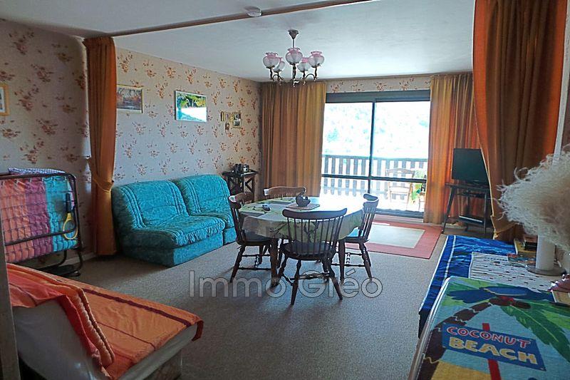 Photo Appartement Gréolières Gréolières les neiges,   achat appartement  1 pièce   36m²