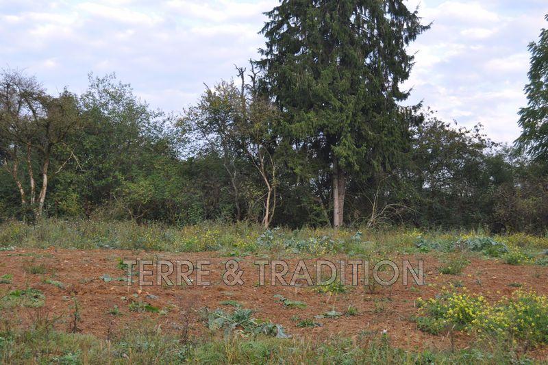 Photo Terrain Rioz Rioz,   achat terrain   1250m²