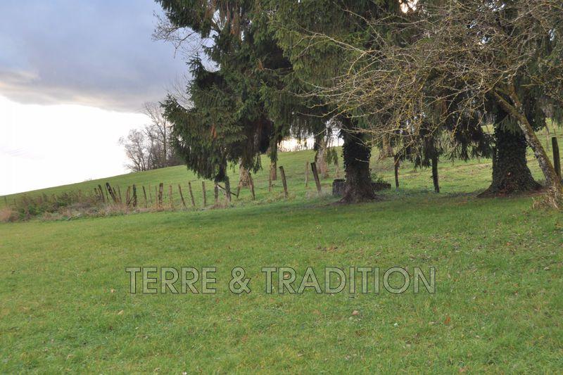 Photo Terrain Oiselay-et-Grachaux Rioz,   achat terrain   2500m²
