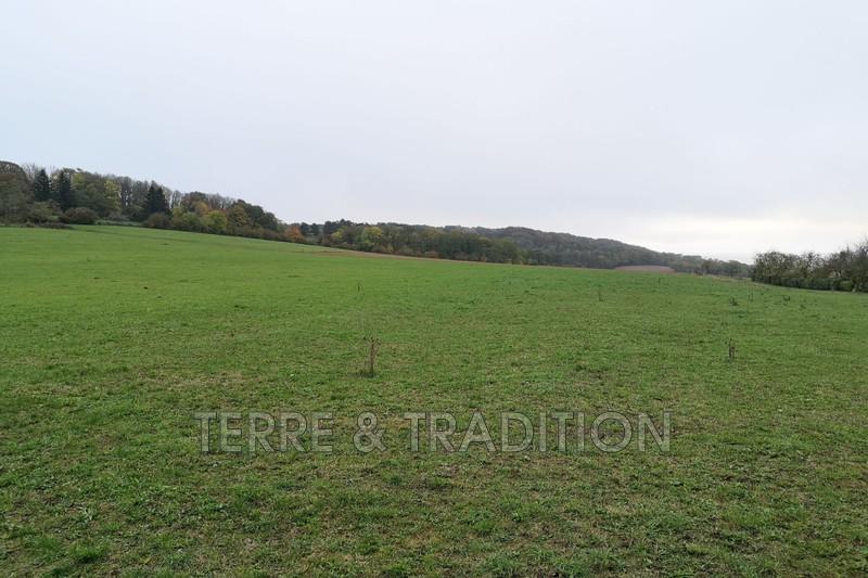 Photo Terrain Cordonnet Rioz,   achat terrain   1600m²