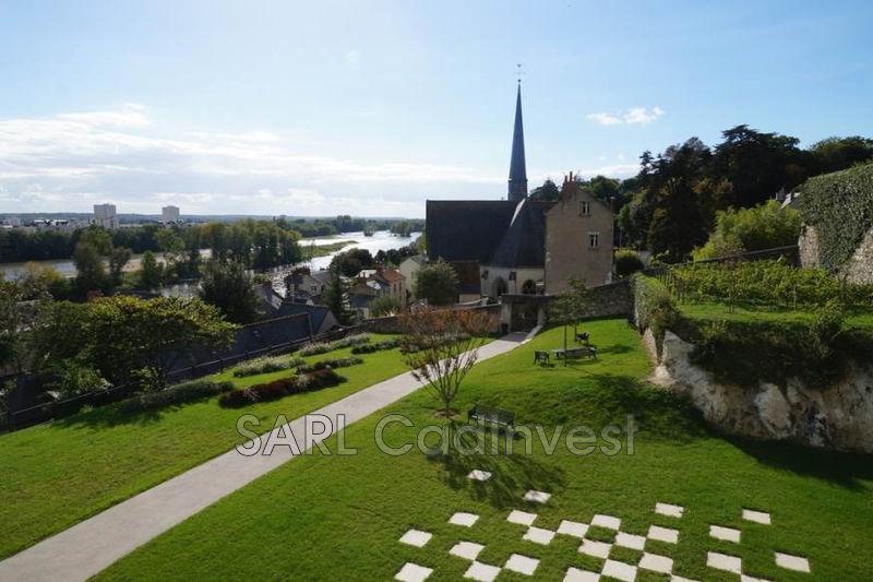 Maison Saint-Cyr-sur-Loire Centre-ville,   achat maison  2 chambres   90m²