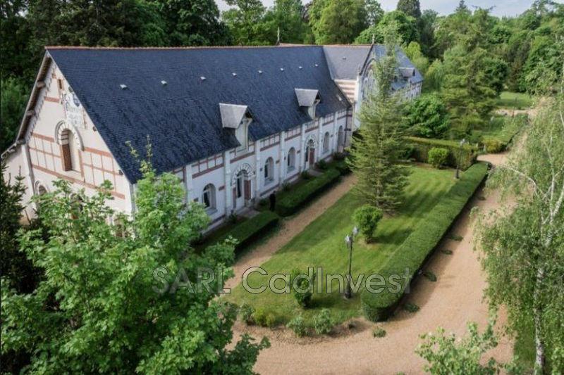 Photo Demeure de prestige Saint-Antoine-du-Rocher Campagne,   achat demeure de prestige  7 chambres   1400m²
