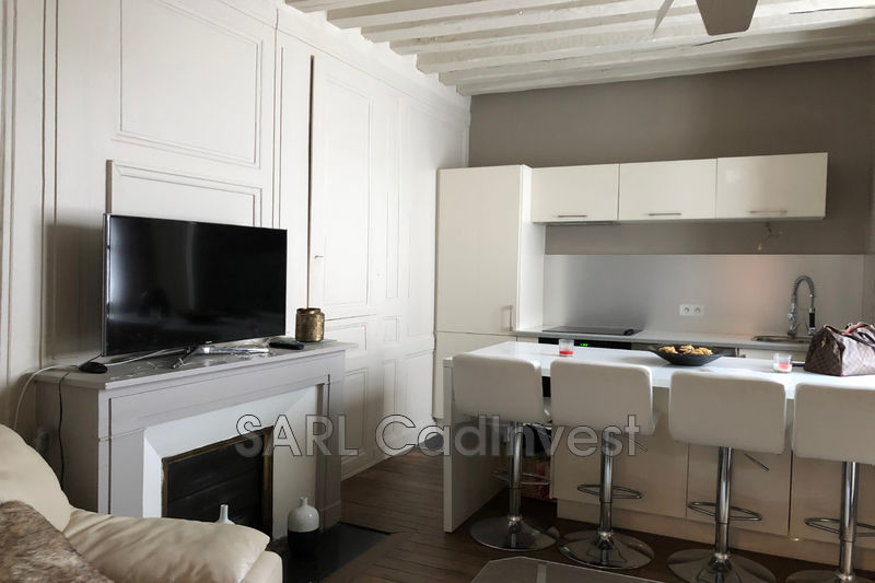 Photo Apartment Tours Centre-ville,   to buy apartment  2 rooms   50 m²