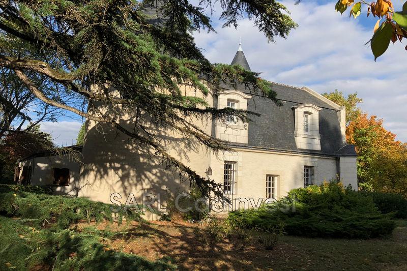 Château Tours Centre-ville,   achat château  5 chambres   250m²
