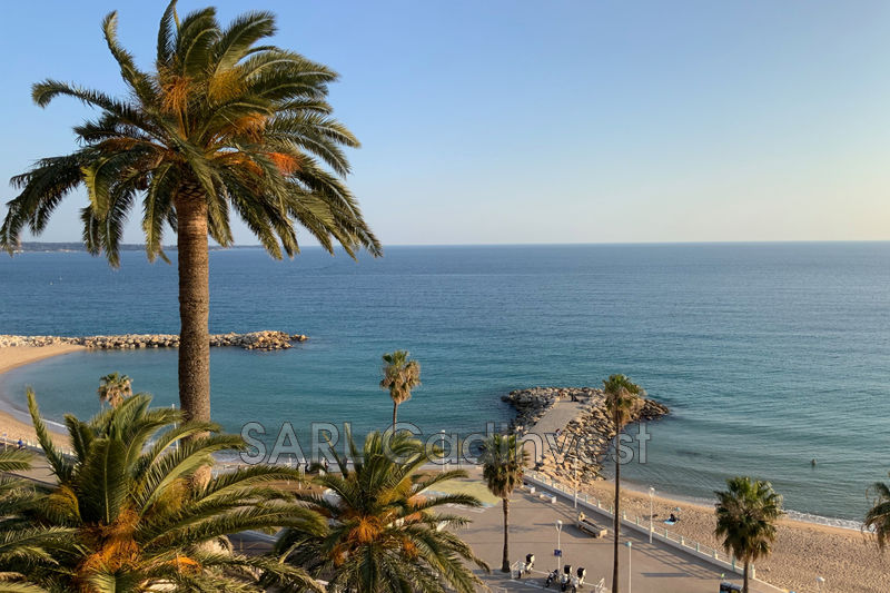 Appartement Cannes Bord de mer cannes centre,   achat appartement  1 pièce   32m²
