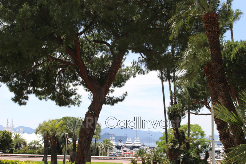 Photo Apartment Cannes Proche plages,   to buy apartment  1 room   20 m²