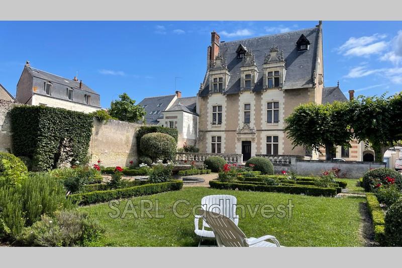 Appartement Amboise Amboise hyper centre,   achat appartement  5 pièces   140m²