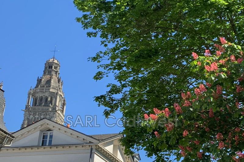 Appartement Tours Quartier cahedrale tours,   achat appartement  5 pièces   125m²