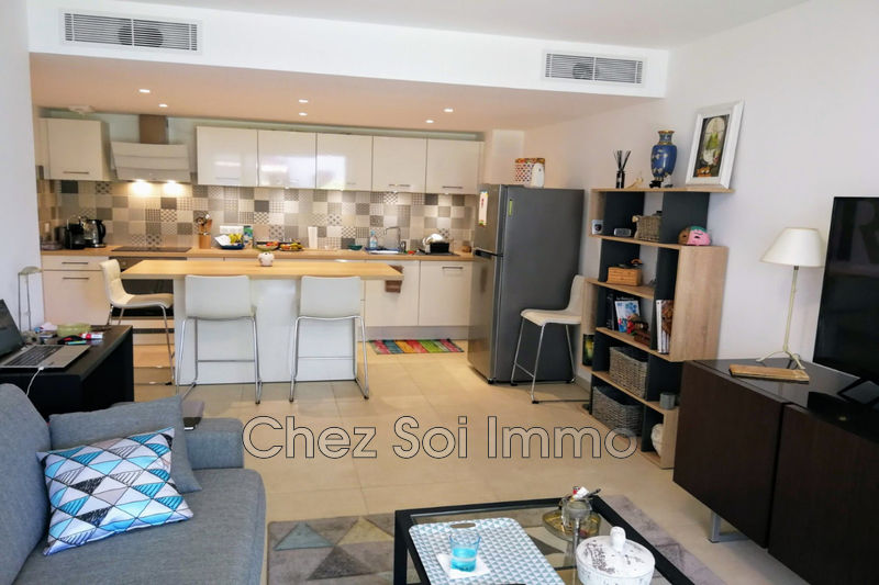 Photo Appartement Saint-Laurent-du-Var   achat appartement  3 pièces   60 m²