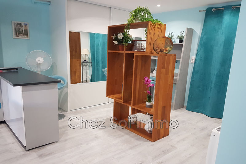 Apartment Cagnes-sur-Mer Centre-ville,   to buy apartment  2 rooms   56 m²