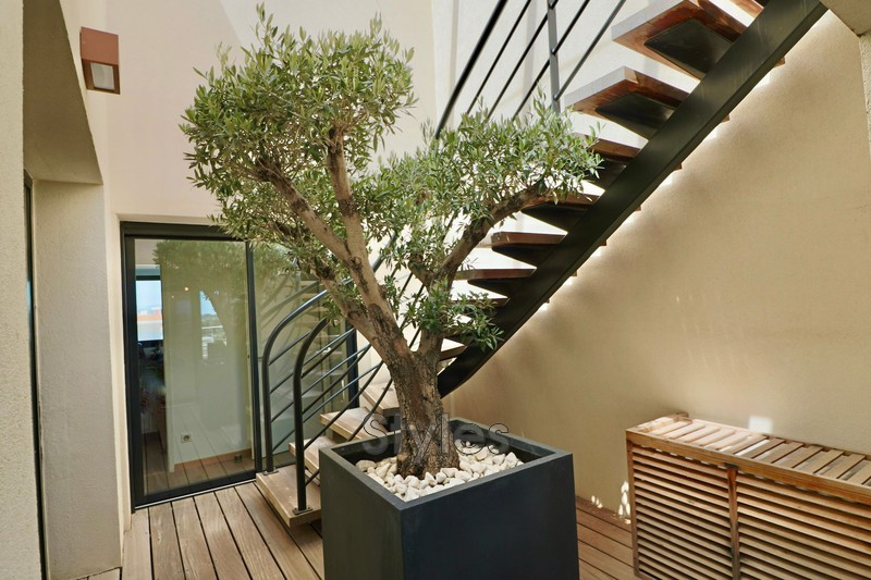 Photo n°8 - Location appartement Montpellier 34000 - 3 500 €