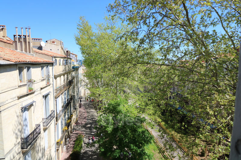 Photo Appartement t2 Montpellier  Location appartement t2  2 pièces   38 m²