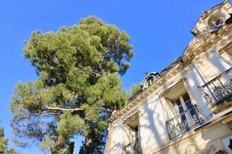 Photo Propriété Montpellier   achat propriété  10 chambres   600m²