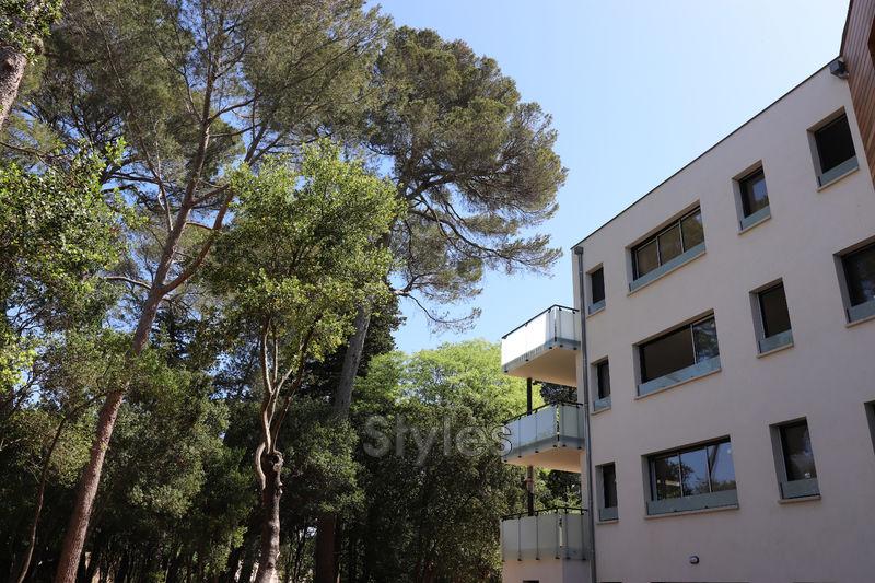 Photo Appartement Montpellier   achat appartement  4 pièces   100m²
