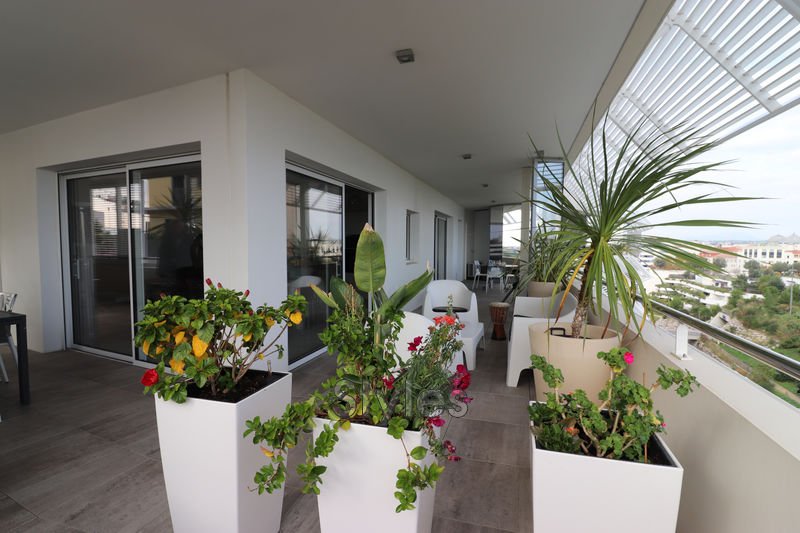 Photo Appartement Montpellier   achat appartement  5 pièces   113m²