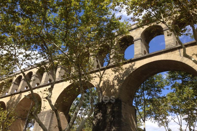 Photo Appartement Montpellier   achat appartement  3 pièces   127m²