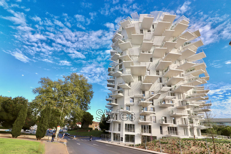 Photo Appartement Montpellier   achat appartement  3 pièces   61m²