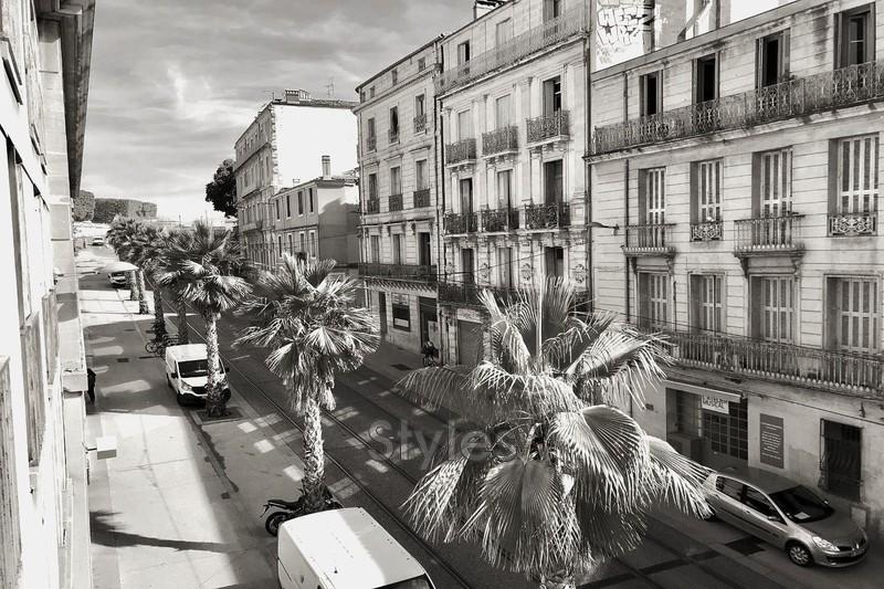 Photo Appartement Montpellier   achat appartement  1 pièce   33m²