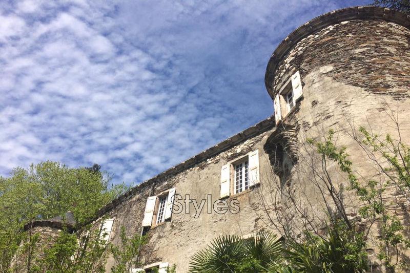 Photo Château Anduze   achat château  11 chambres   460m²