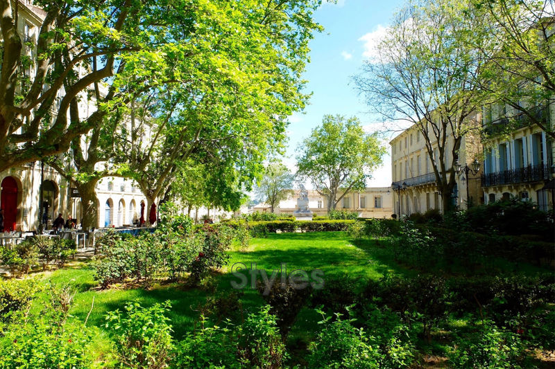 Photo Apartment Montpellier   to buy apartment  5 rooms   171m²
