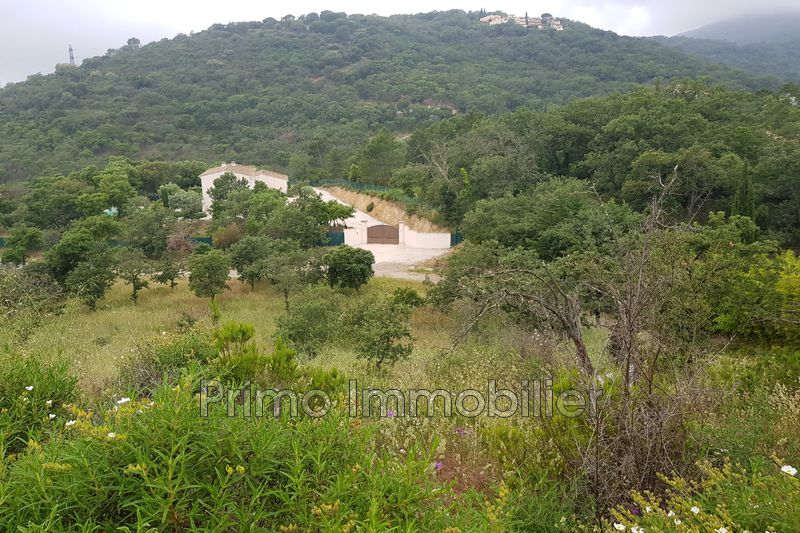 Photo Land Grimaud   to buy land