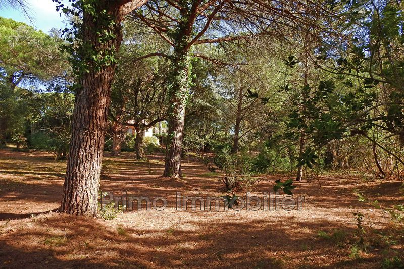 Photo Land Grimaud   to buy land   2335 m²