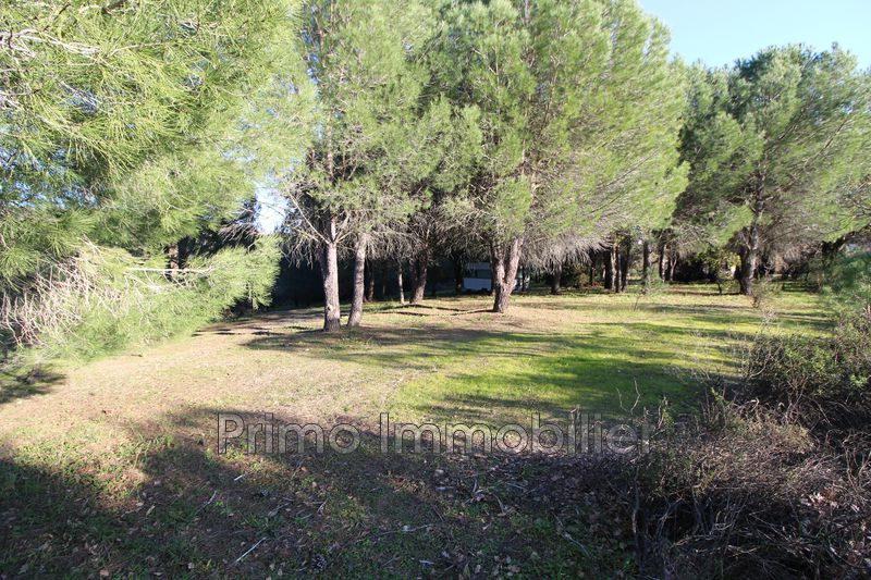 Photo Land Grimaud   to buy land   5574 m²