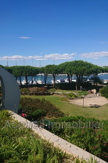Photo Appartement Port-Camargue Plage sud,   achat appartement  1 pièce   20m²