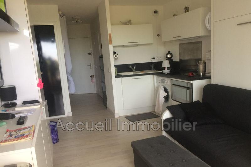 Photo Appartement Port-Camargue Plages sud,   achat appartement  1 pièce   20m²
