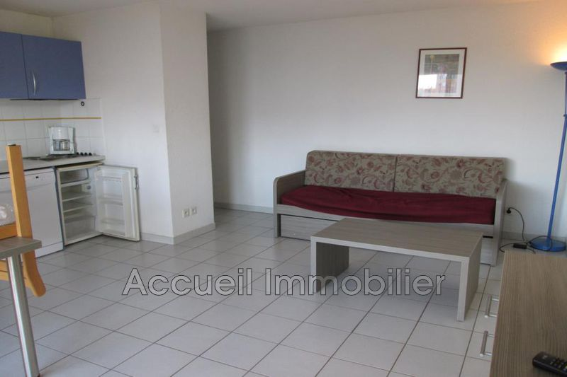 Photo Appartement Le Grau-du-Roi Rive gauche,   achat appartement  2 pièces   42m²