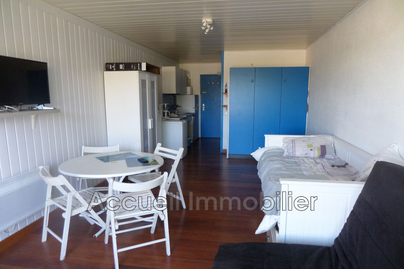 Photo Appartement Port-Camargue Proche plages,   achat appartement  1 pièce   21m²