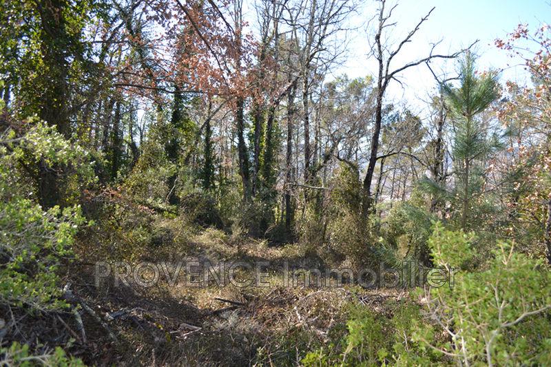 Photo n°3 - Vente terrain Salernes 83690 - 10 000 €