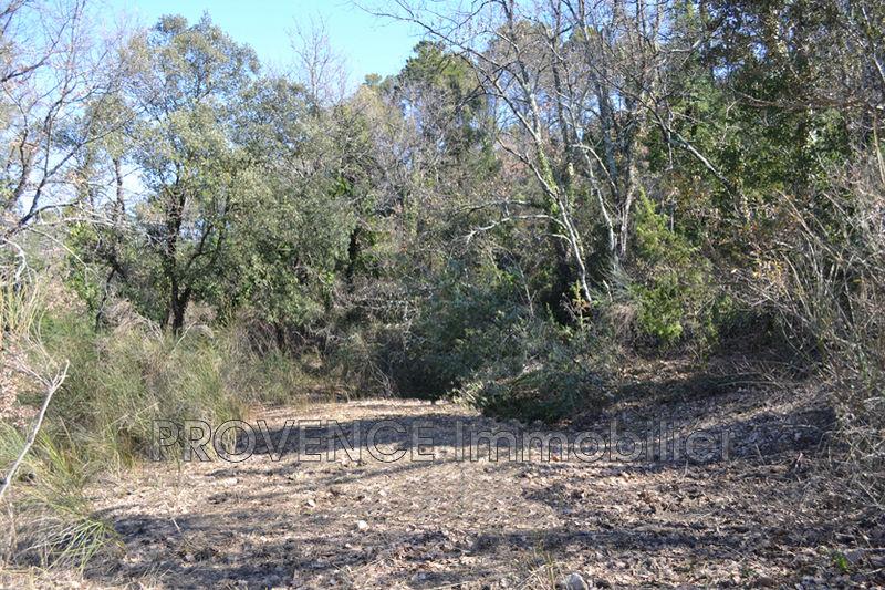 Photo n°4 - Vente terrain Salernes 83690 - 10 000 €