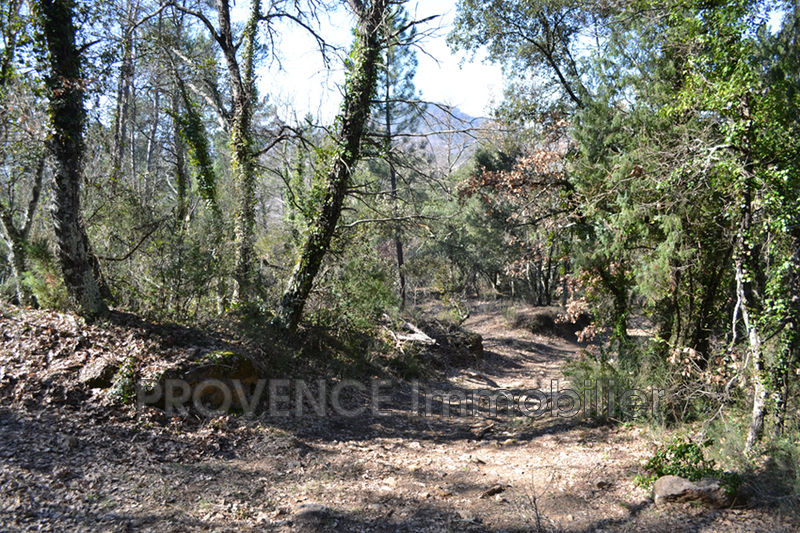 Photo n°7 - Vente terrain Salernes 83690 - 10 000 €