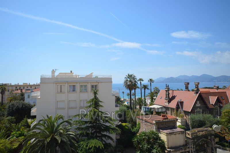 Appartement Cannes Plages du midi,  Location saisonnière appartement  2 pièces   55m²