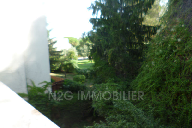 Photo n°2 - Location appartement Le Cannet 06110 - 460 €
