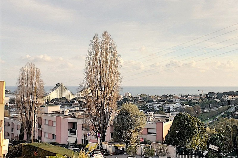 Appartement Villeneuve-Loubet Amadeus,   achat appartement  2 pièces   31m²