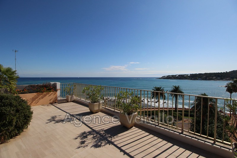 Photo n°4 - Vente Appartement villa sur le toit Antibes 06600 - 2 465 000 €